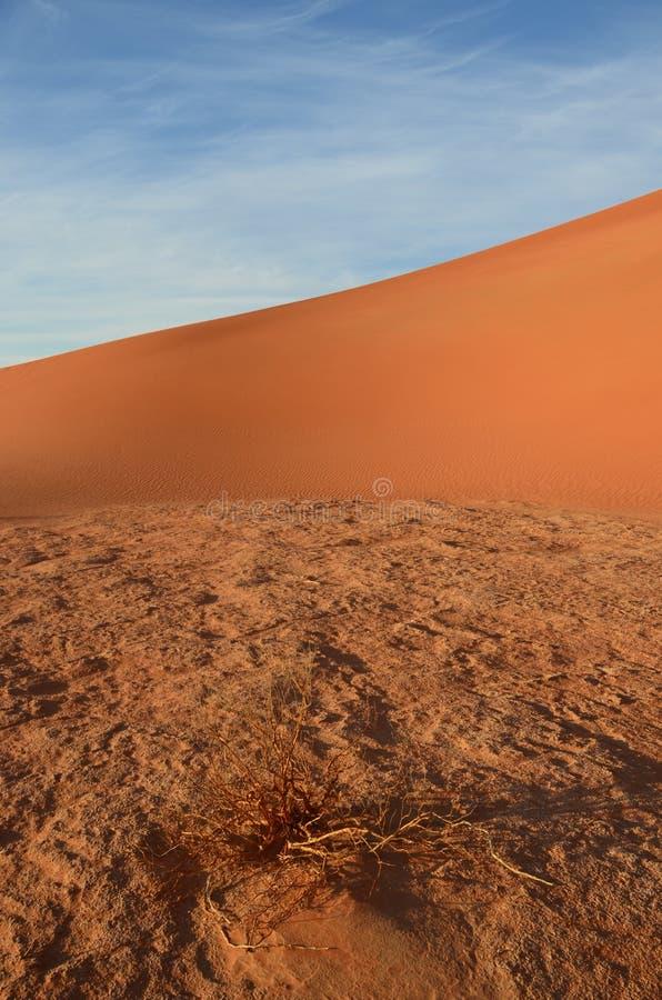 pustynna ściana zdjęcie stock