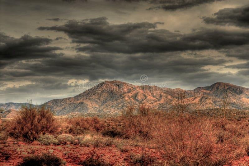 pustynna burza obraz royalty free