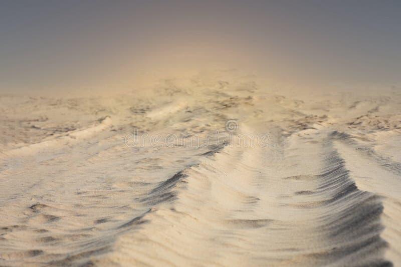 Pustynna burza piaskowa zdjęcie stock