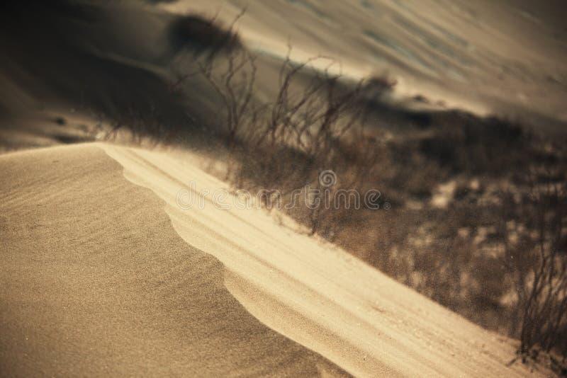 pustynna burza piaskowa zdjęcia stock