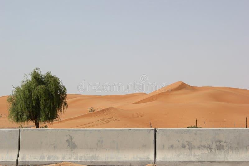 Pustynna piasek bariera zatrzymuje pustynnienie zdjęcie stock