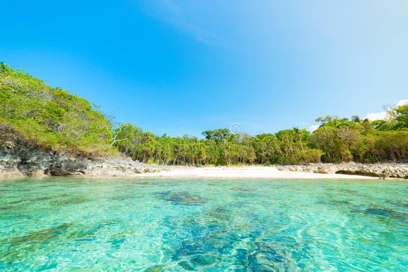 Pustynna plaża przeglądać od morza, turkusowa błękitne wody, tropikalny raj, podróży miejsce przeznaczenia, Kei wyspa, Moluccas,  fotografia royalty free