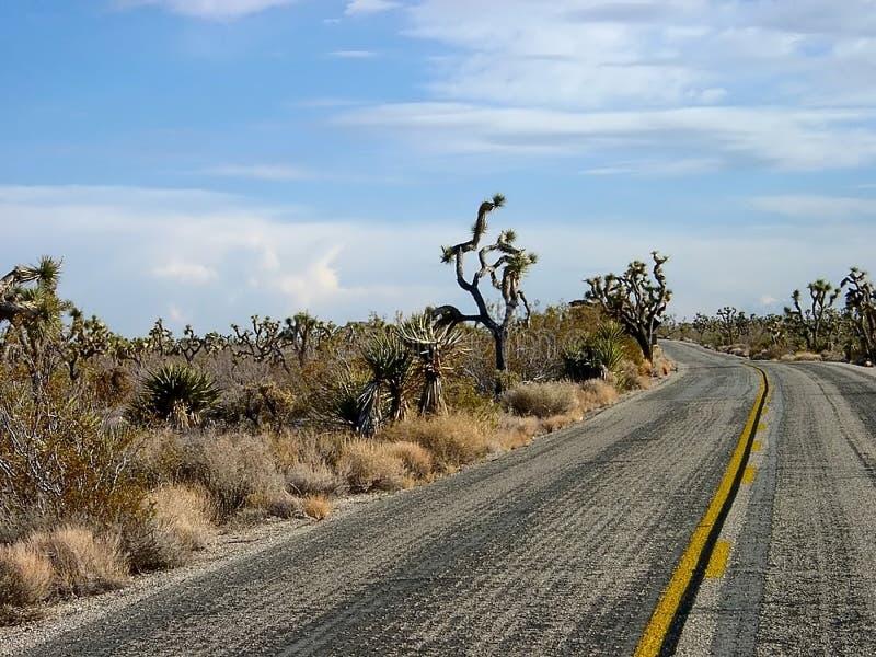 Download Pustynna road zdjęcie stock. Obraz złożonej z park, yellow - 125898