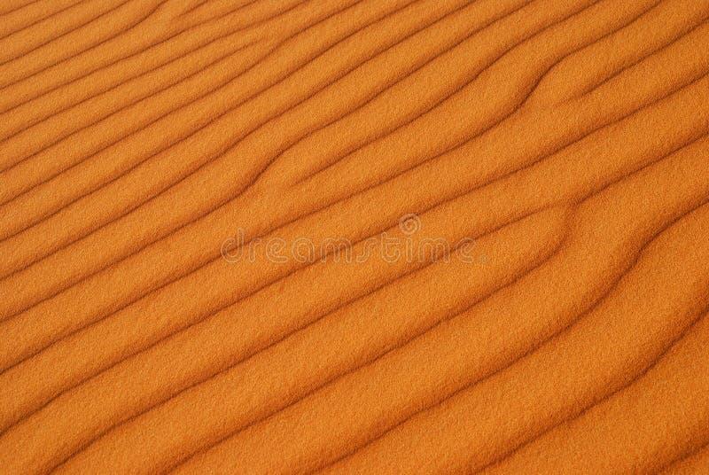 Pustynna tekstura. Erg Chebbi, Sahara, Maroko fotografia royalty free