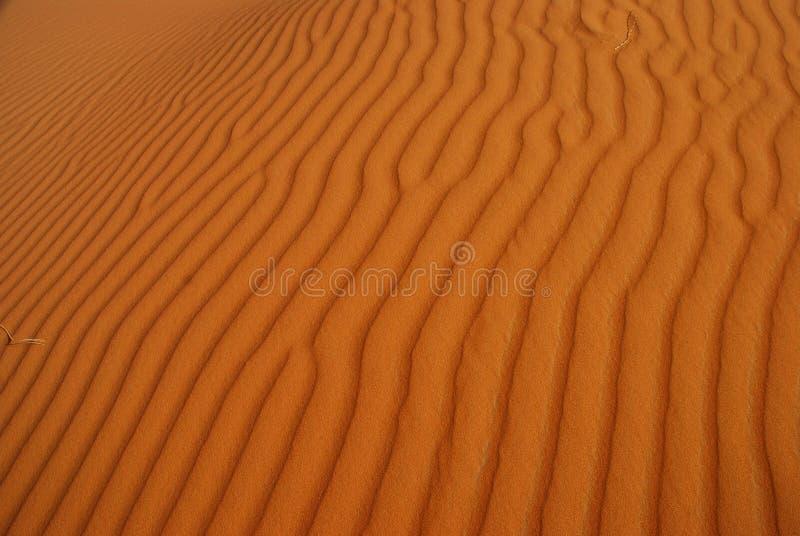 Pustynna tekstura. Erg Chebbi, Sahara, Maroko zdjęcie royalty free