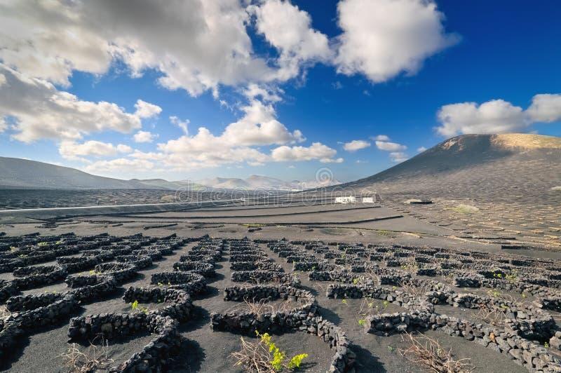 pustynnej wyspy krajobraz Lanzarote Spain obraz stock