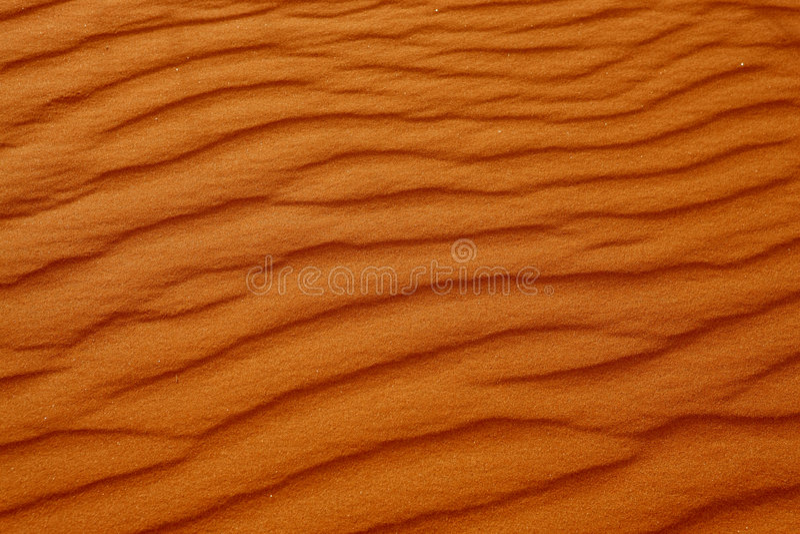 pustynni Afrykanów druki obraz royalty free