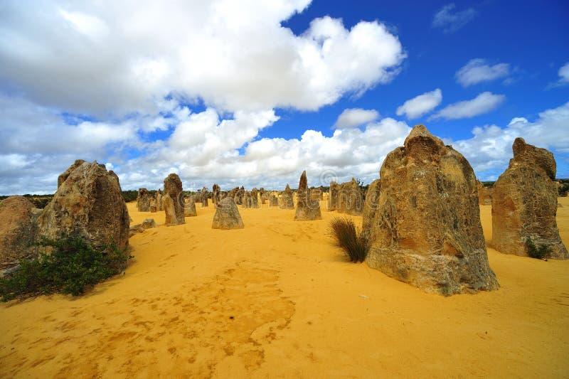 pustynni Australia pinakle zdjęcia royalty free