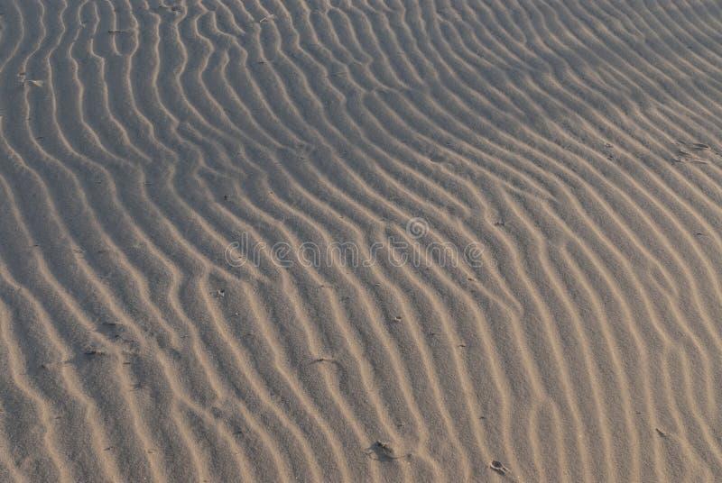 Pustynni Krajobrazowi piasek diuny wzory zdjęcia royalty free