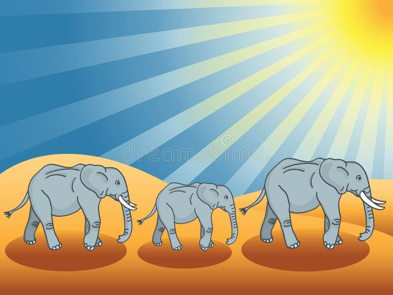 pustynni słonie ilustracji