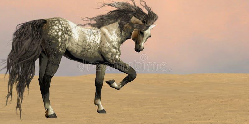 Pustynny Arabski koń ilustracji