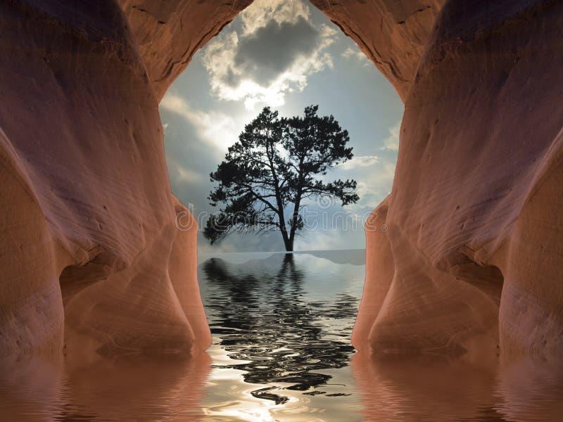 Pustynny drzewo ilustracji