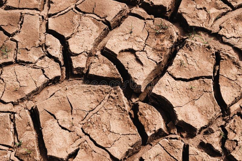 Pustynny globalnego ocieplenia pojęcie globalne zmiana klimatu przyczyny cyngla suszy obraz royalty free