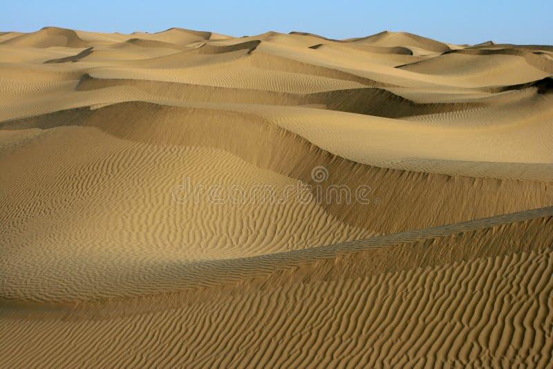 pustynny kształt zdjęcia royalty free