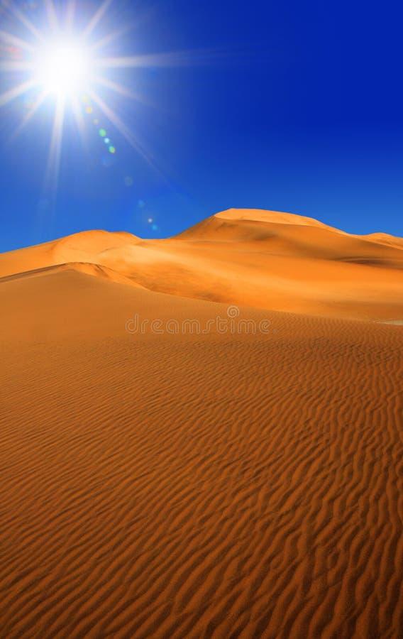 pustynny namib obrazy stock