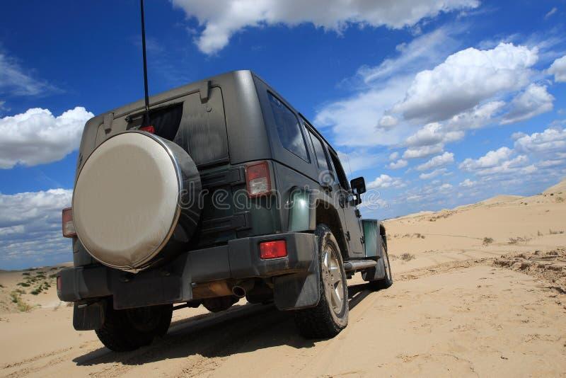 pustynny safari zdjęcie royalty free