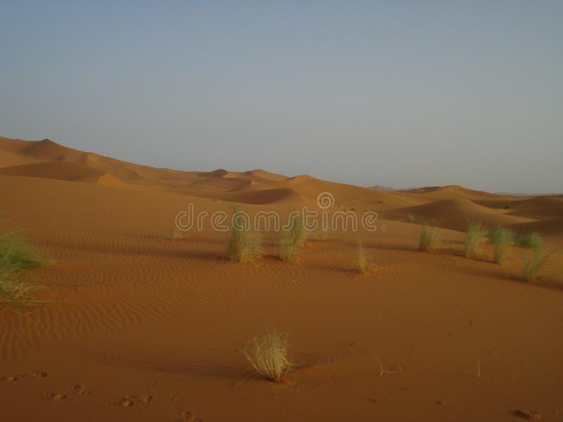 pustynny widok zdjęcia stock