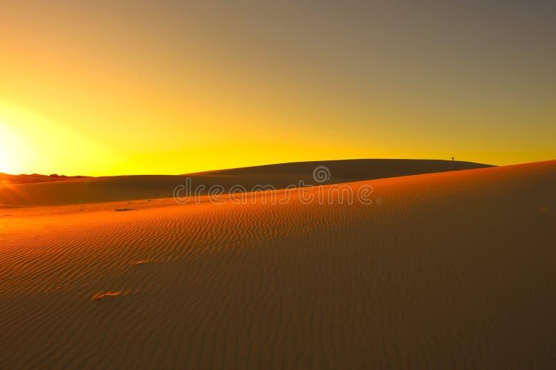 pustynny zmierzch zdjęcia stock