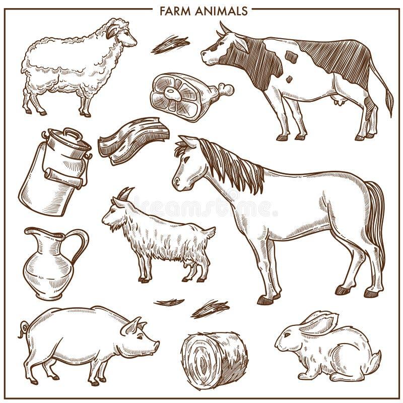Puszyści cakle, duża dorosła krowa, silny koń, mała kózka, gruba świnia ilustracji