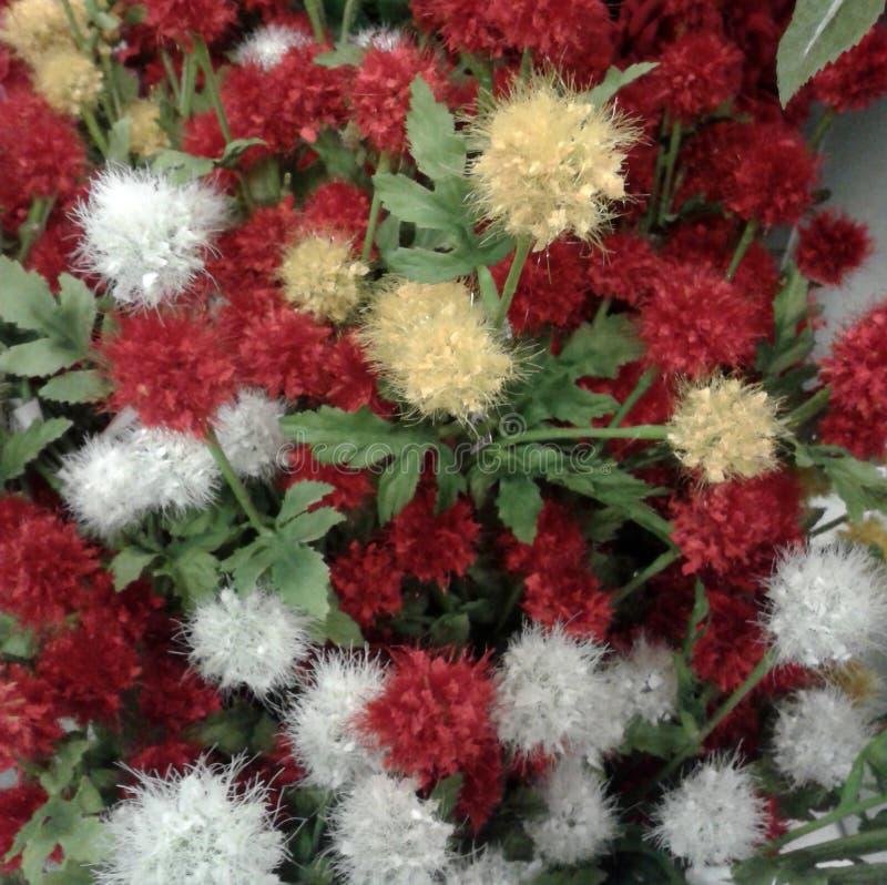 Puszyści imitacja kwiaty zdjęcie royalty free
