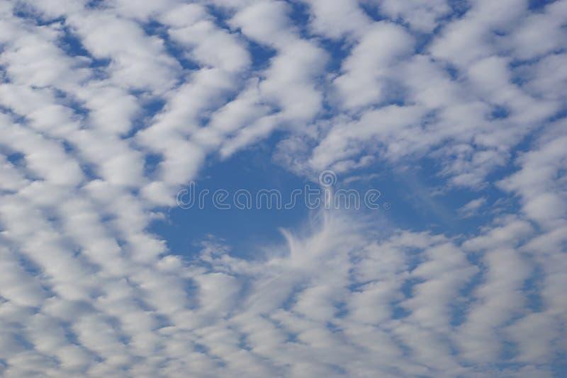 Puszyste Altocumulus chmury zdjęcia royalty free