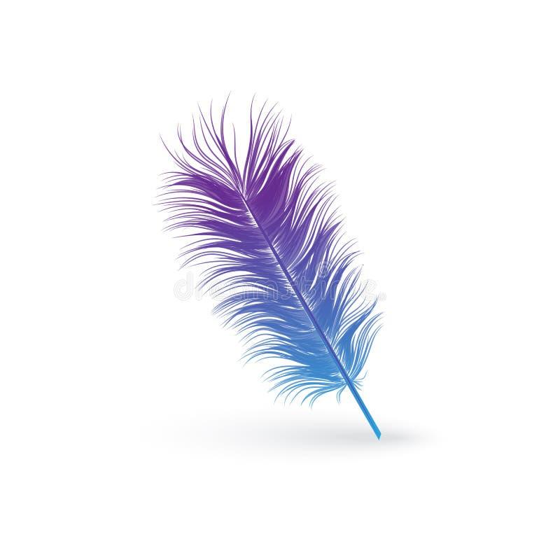 Puszysty błękitny i purpurowy ptasi piórko royalty ilustracja