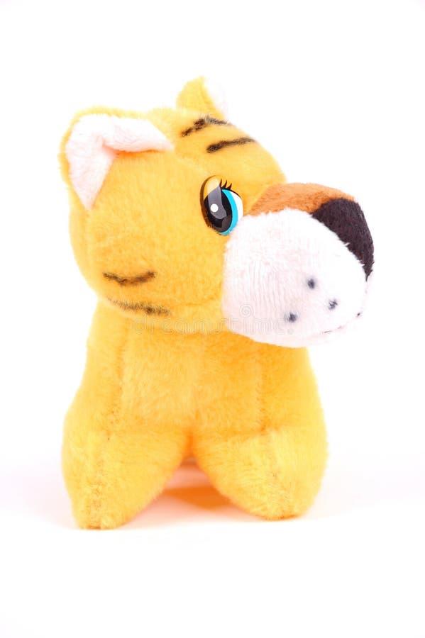 puszysty mały tygrys zdjęcia stock