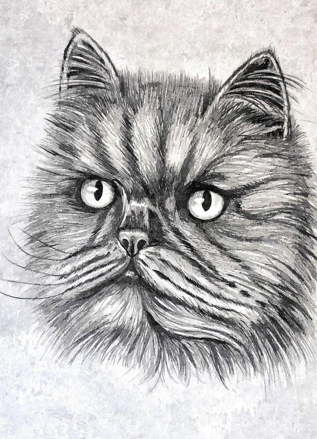 Puszysty Syberyjski kot Portret Malować mokrą akwarelę na papierze Naiwna sztuka Rysunkowa akwarela na papierze royalty ilustracja