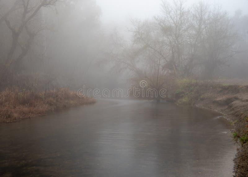 Putah Creek en Davis, California, Estados Unidos fotografía de archivo libre de regalías