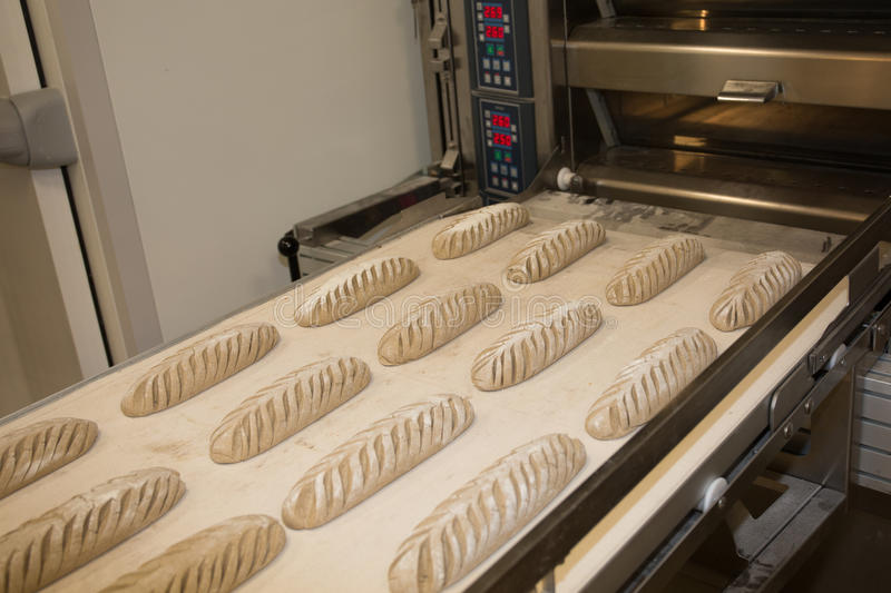 Puting fresh baked bread into the rack. Manufacturing process of spanish bread stock photo