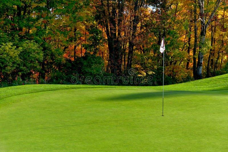 Putting green de terrain de golf images libres de droits
