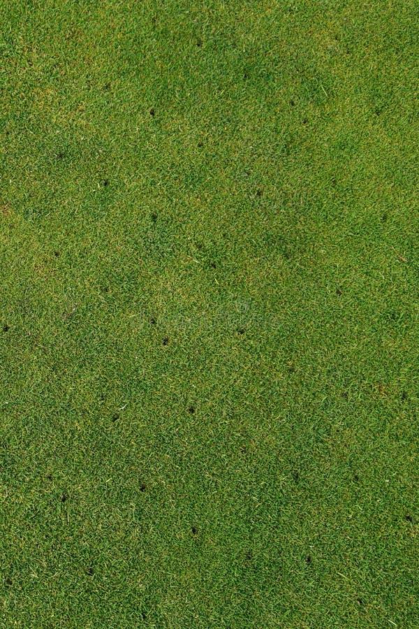 Putting green en el campo de golf - aireado - vertical del fondo del mantenimiento fotografía de archivo