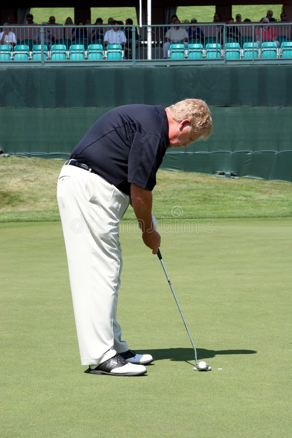 Putting For The Prize. A golfer putting at a golf tournament stock images