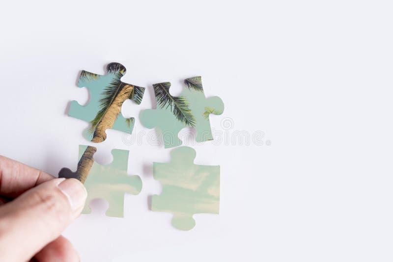 Puzzel met beeld van kokospalm royalty-vrije stock afbeeldingen