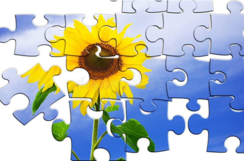 Puzzle fotografie stock
