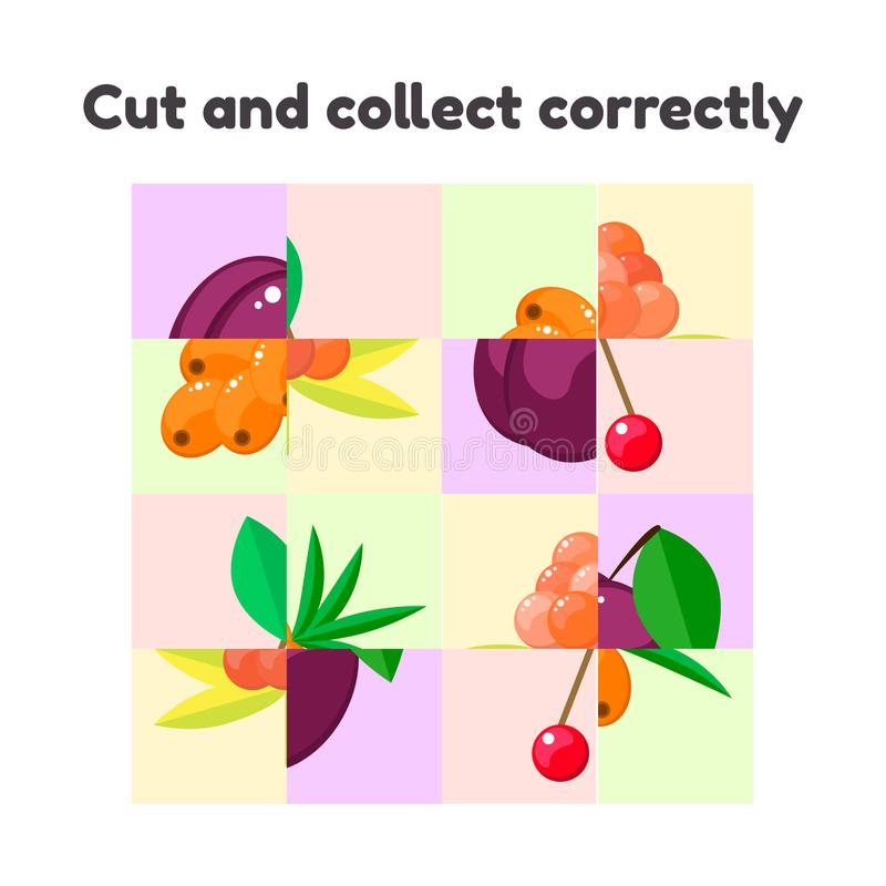 Puzzle game for preschool and school age children. cut and collect correctly. berries, cloudberry, plum, sea buckthorn, cherry vector illustration
