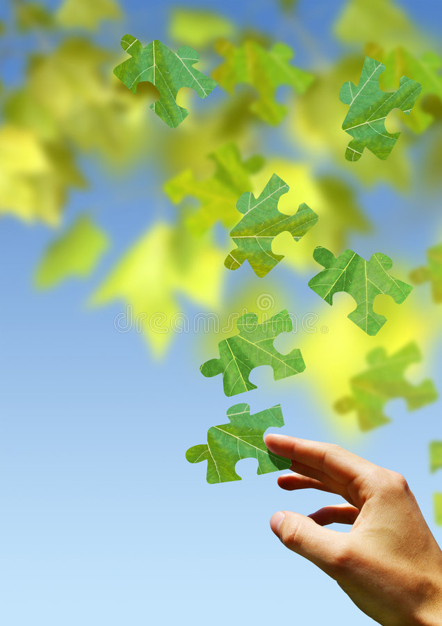 puzzle natury obrazy royalty free