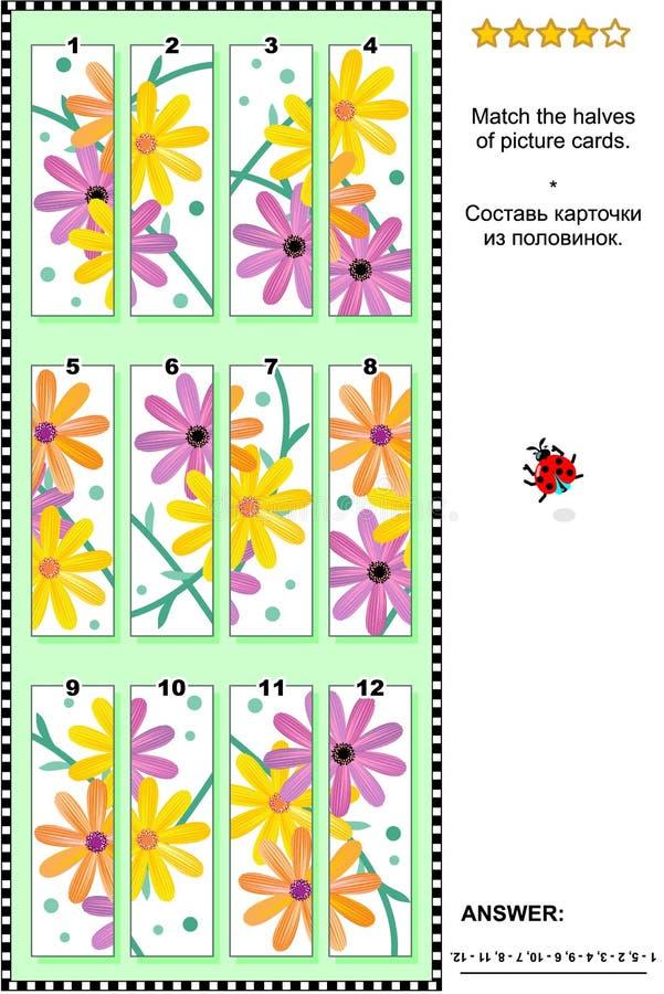 Puzzle visivo - abbini le metà - margherite del gerber illustrazione di stock