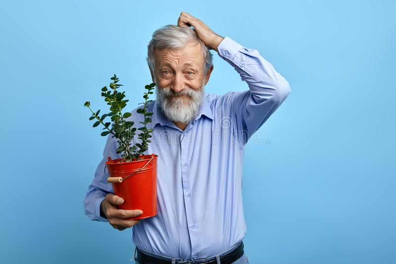 Puzzled funny old man scratching his hair while posing to the camera stock images