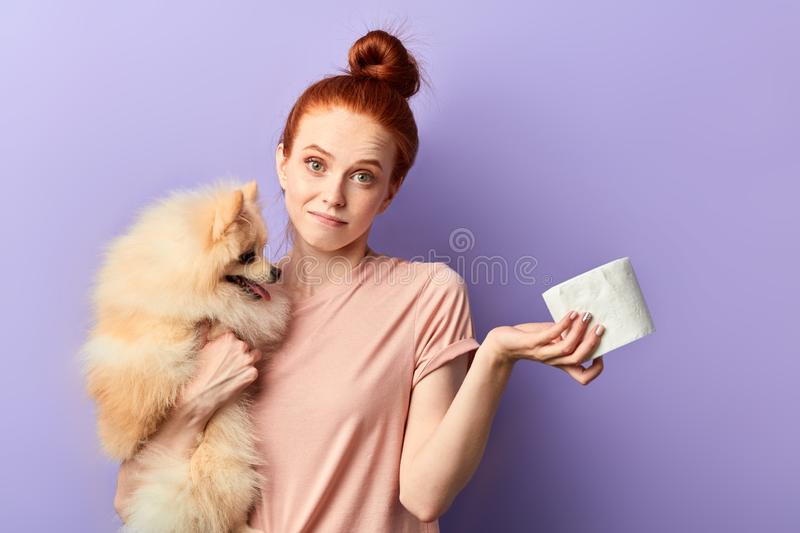 Puzzled girl holding a dog and napkins stock photos