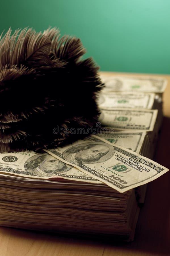 pyłu zbierania pieniędzy zdjęcia stock