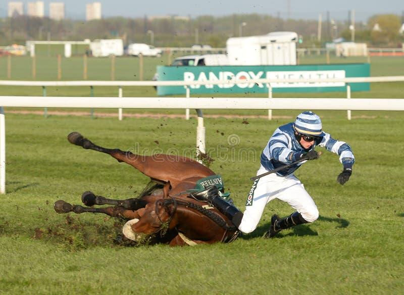 pyatigorsk лошади hippodrome caucasus северное участвуя в гонке Россия стоковые фотографии rf