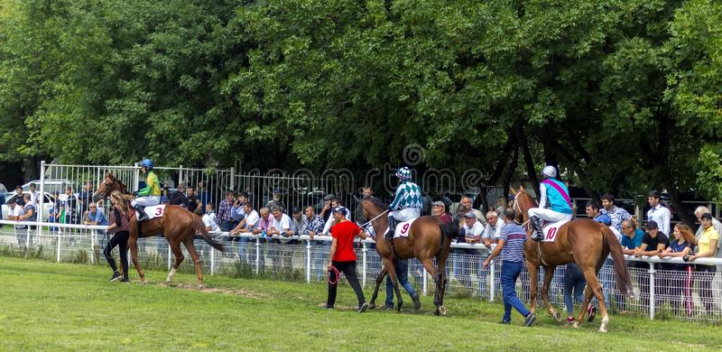 Before horse race stock photography