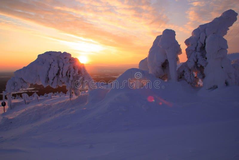 Pyhätunturi Ski Resort royaltyfri foto