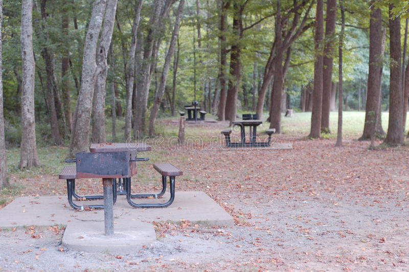 Pykniczny czas przy miejscowego parkiem zdjęcia royalty free
