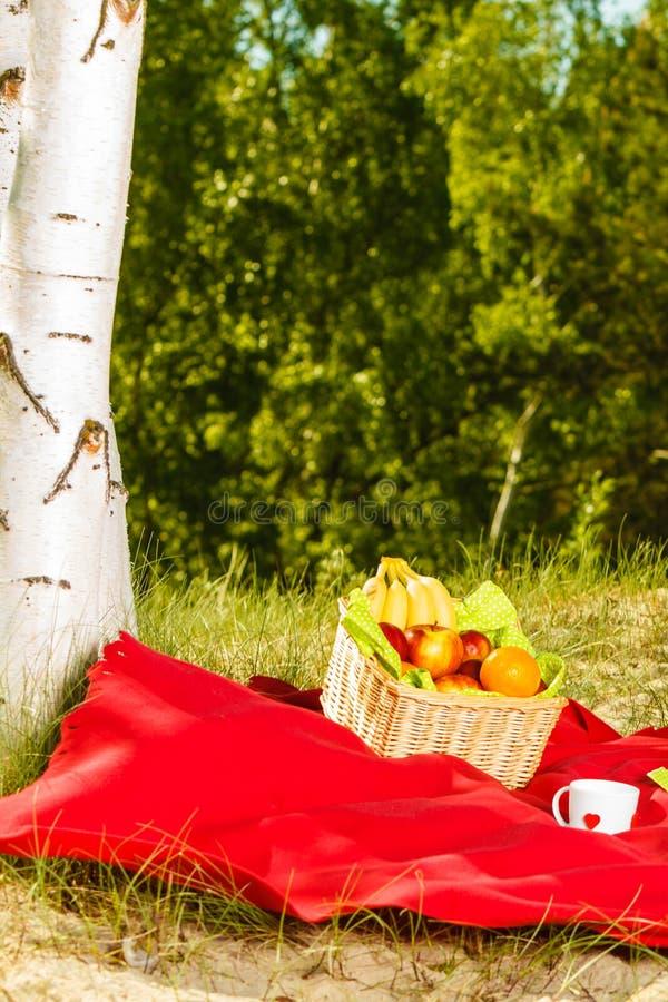 Pykniczny kosz na koc w drewnach zdjęcie stock