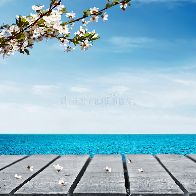 Pykniczny stół i morze obrazy royalty free