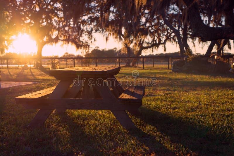 Pykniczny stół w polu fotografia royalty free