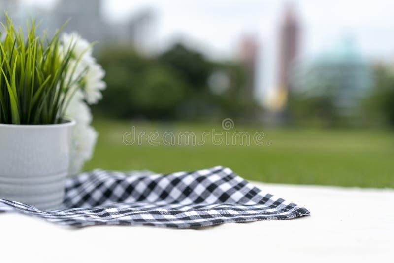 Pykniczny sukienny czerń - błękita kwadrata wzór na białym płótnie w outside polu dla strzału i parku paczki lub pakunku zdjęcia stock