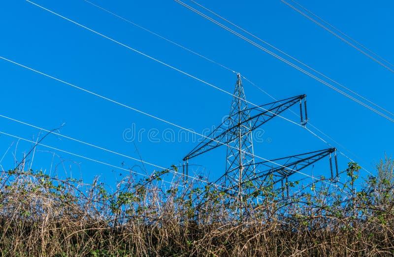 Pylonen met hoog voltage met machtslijnen op een gebied royalty-vrije stock afbeeldingen